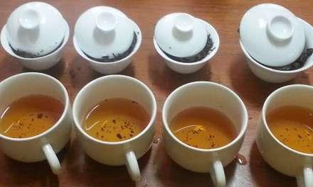 Gongfu Versus Western-Style Brewing