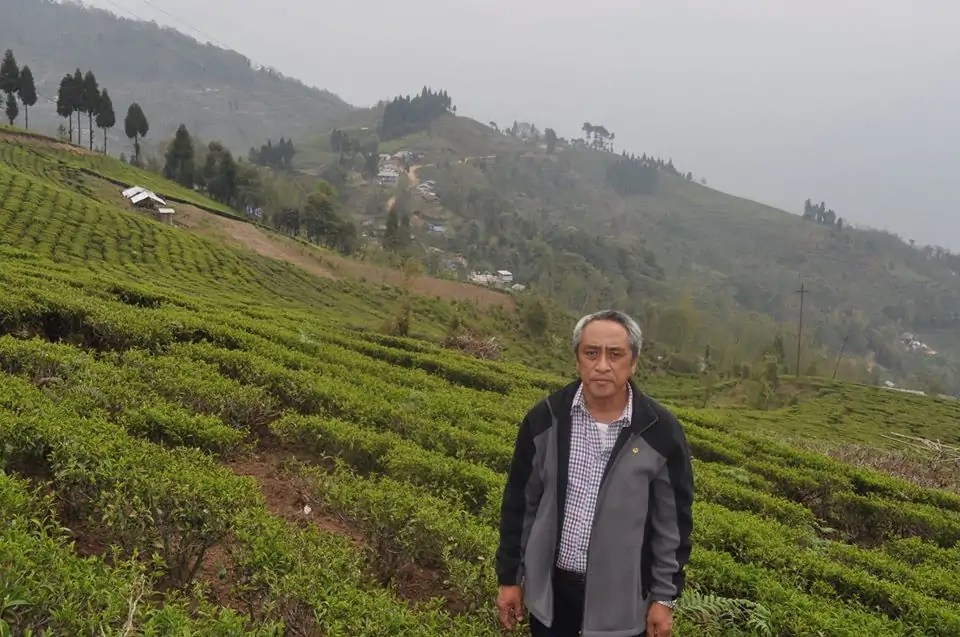 Author Narendra in front of a tea field