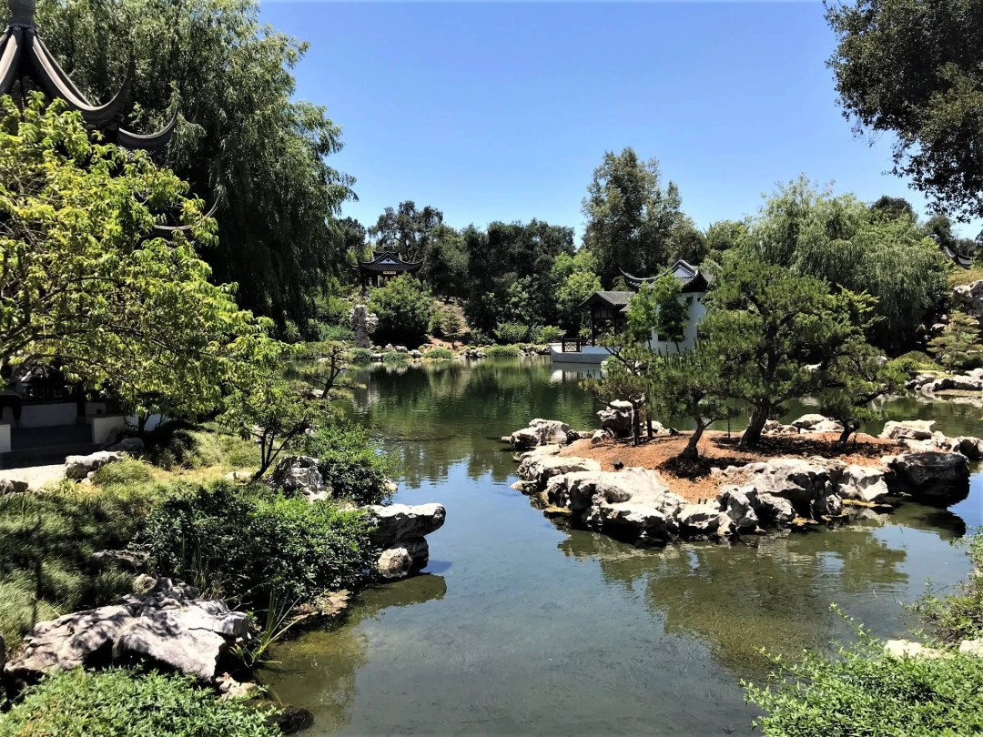 The Huntington's Garden of Flowing Fragrance, with low water level