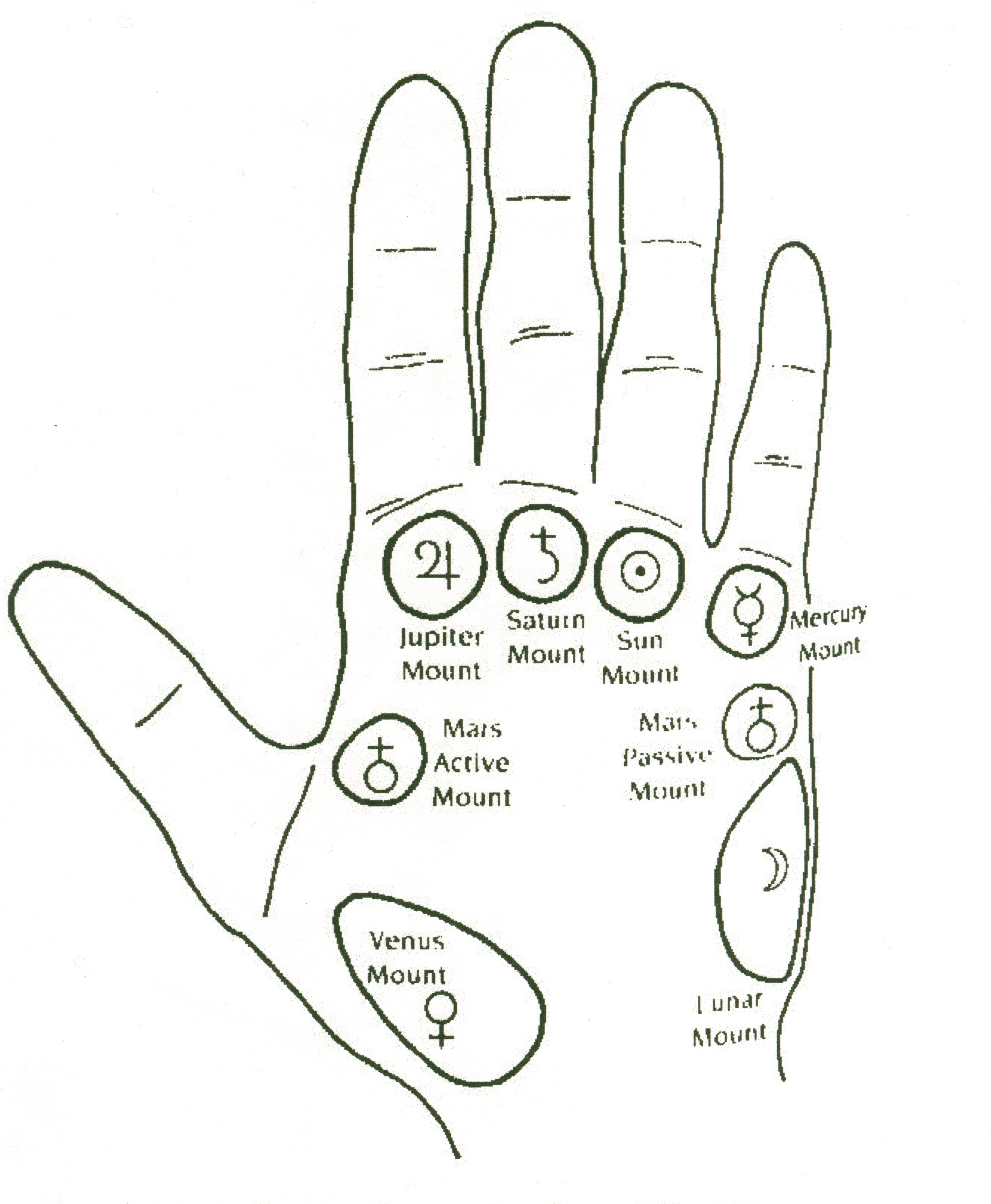 palmistry diagram marriage line contura switch wiring mounts related keywords long