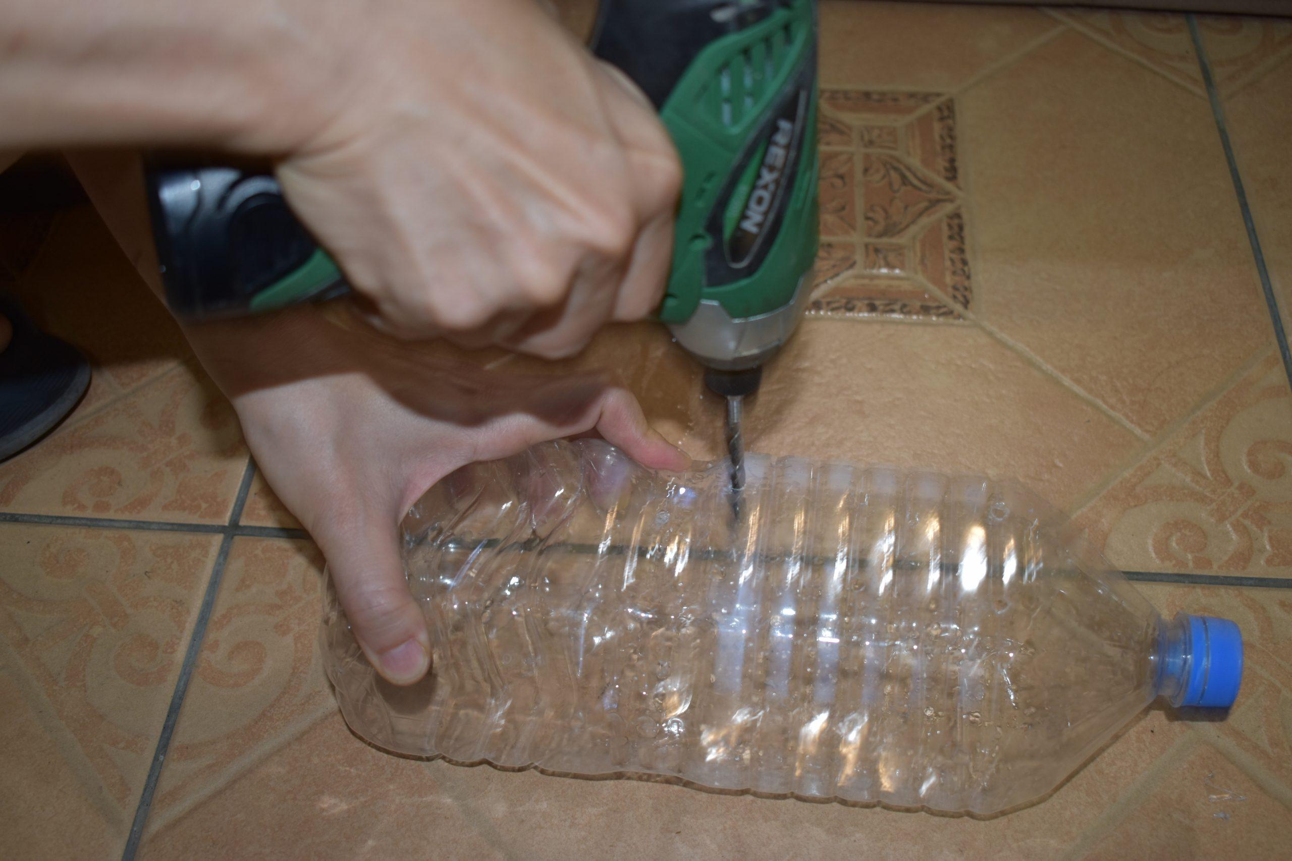 環保愛地球寶特瓶回收 種菜日記 蕹菜空心菜