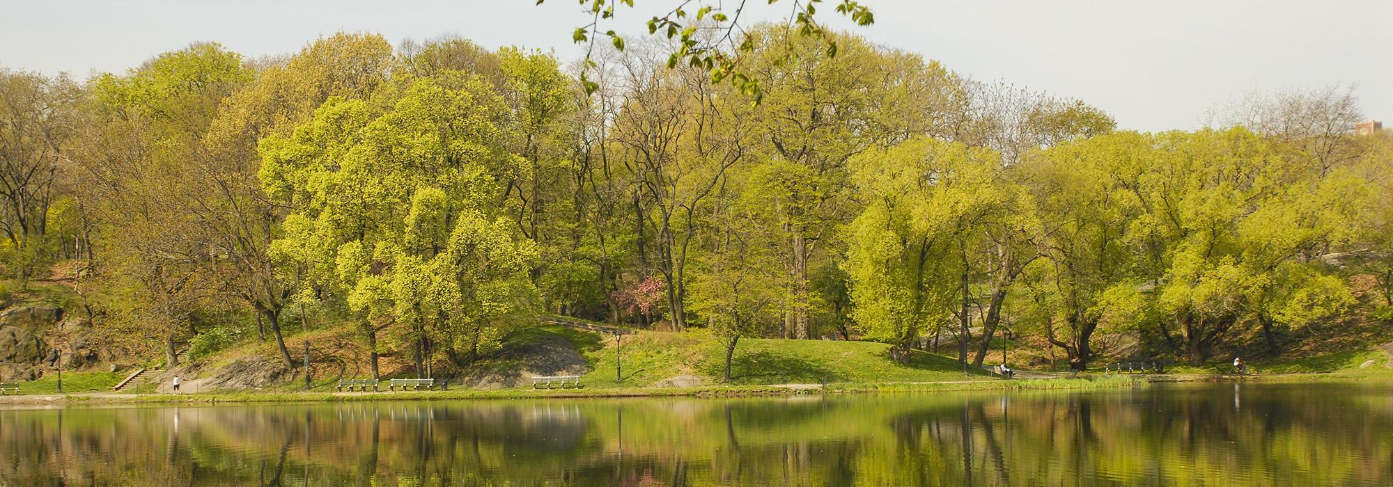 cultural landscapes guides