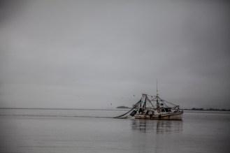Jekyll Island 24