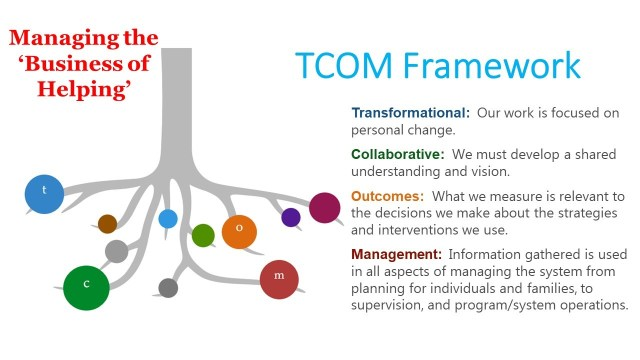 TCOM Framework visualization. TCOM is being symbolized by Roots of a tree.