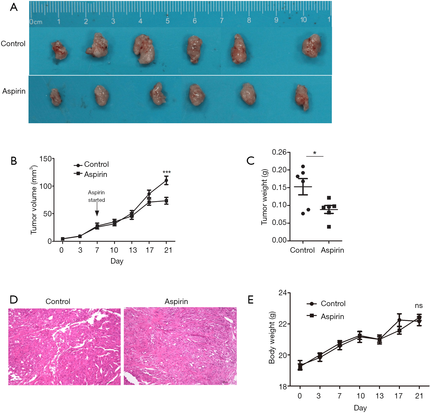 hight resolution of figure 4 in vivo anti tumor effects of aspirin on canine mammary gland tumors cmgt xenograft model a comparison of tumor size removed from the mice