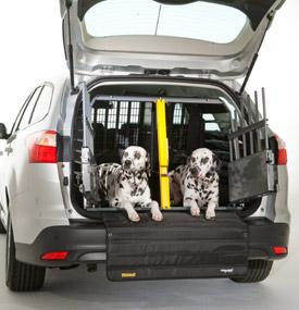 犬 車 ドライブ 注意点 おすすめ 5