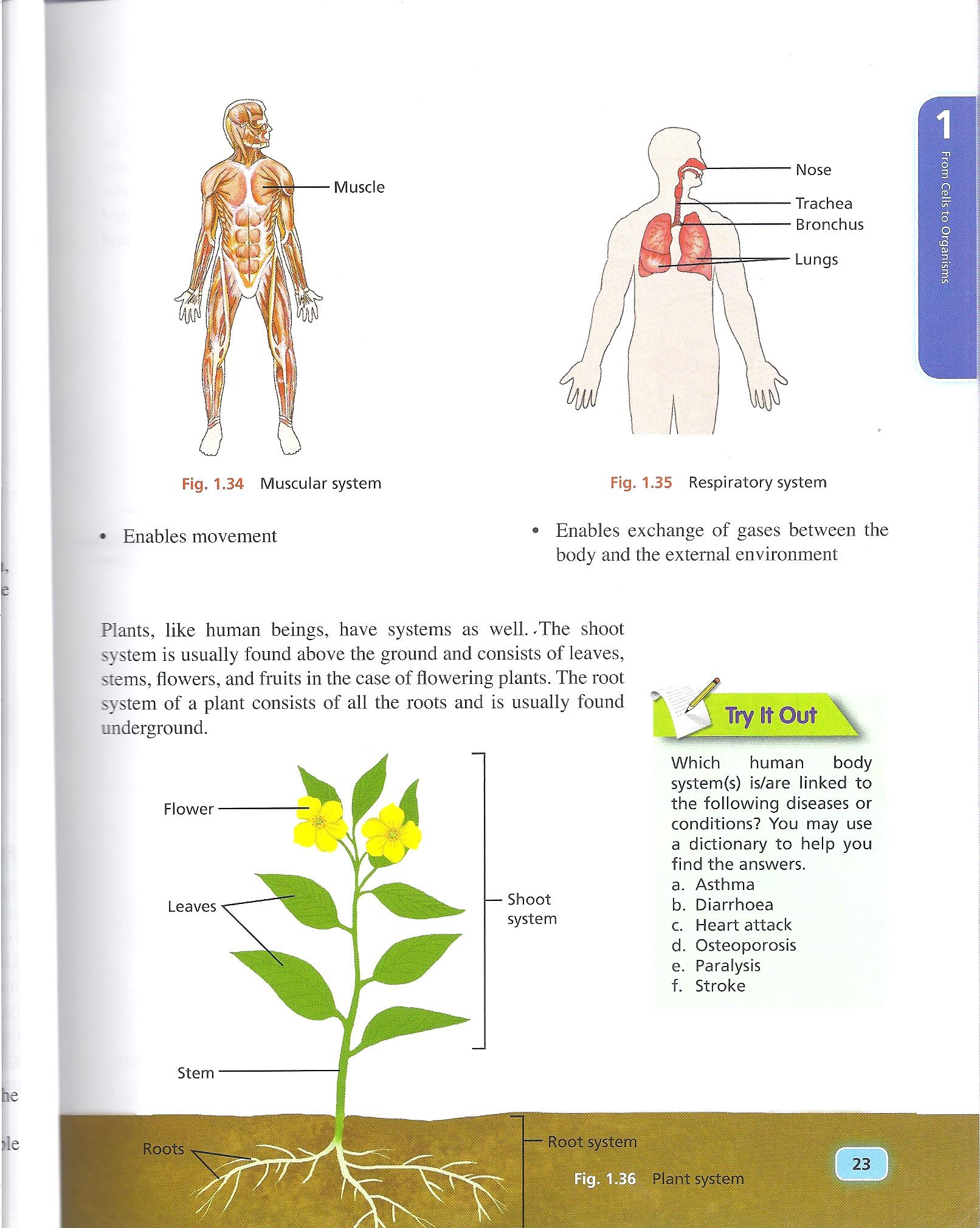 Grade 7 Science Book Chapter 1