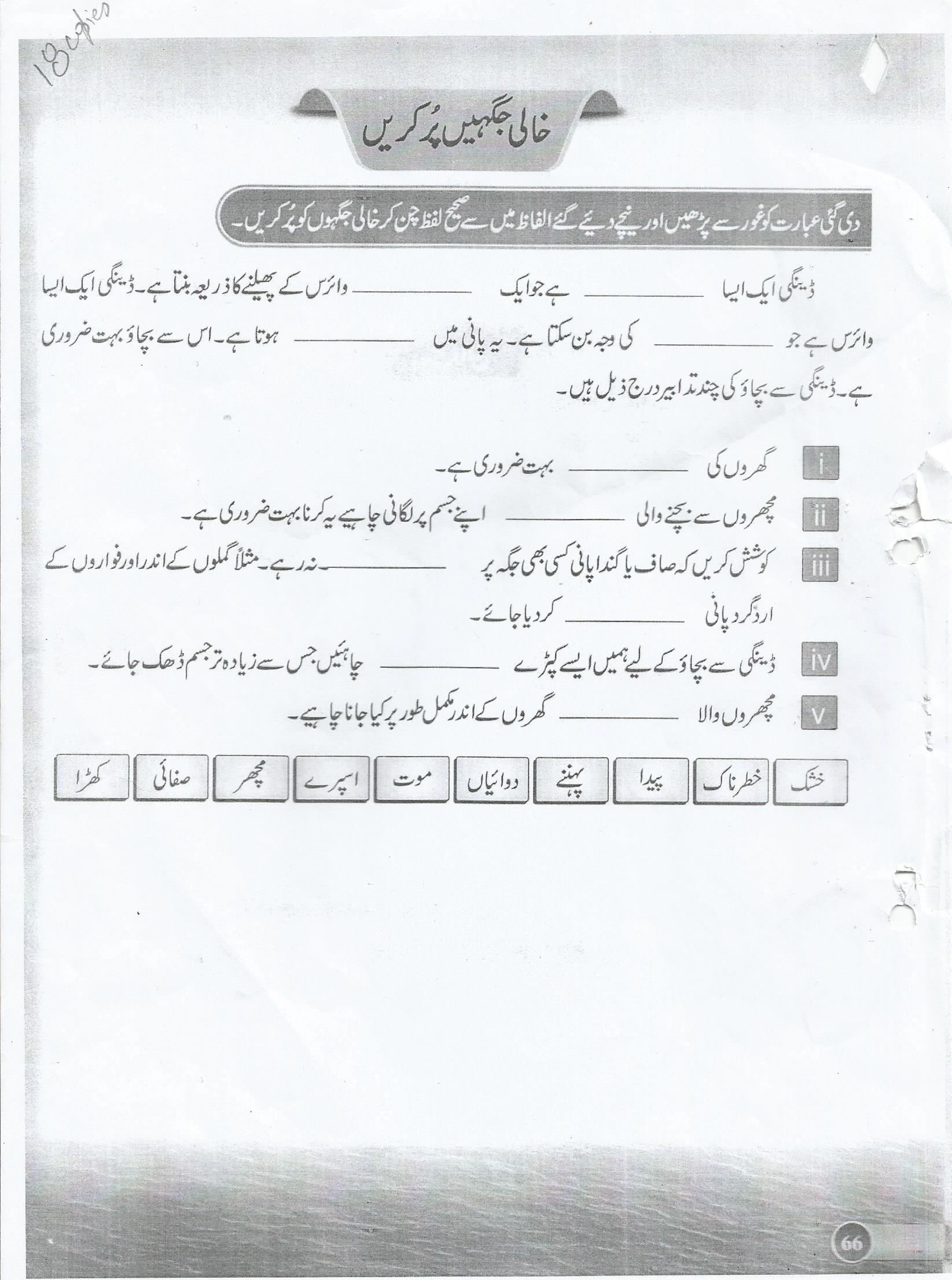 Grade 8 Urdu Practice Worksheets