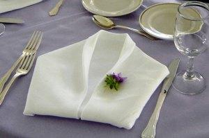 Folded napkin - Folded-napkin