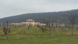 tct caterers Breaux Vineyards 2 - tct-caterers-Breaux-Vineyards-2