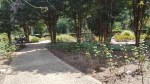 tct caterers Brookside Gardens 27 - tct-caterers-Brookside-Gardens-27