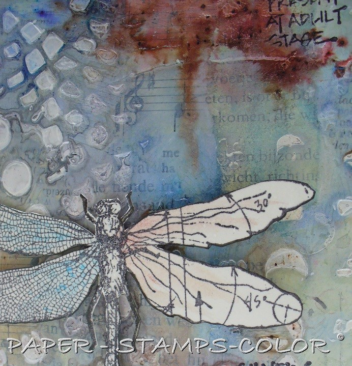 TCW tutorial mixedmedia dragonfly square