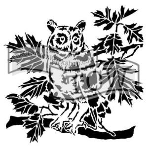 tcw609-curious-owl