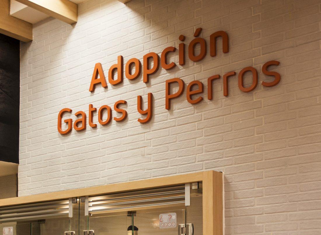 Adopcion Gatos y Perros