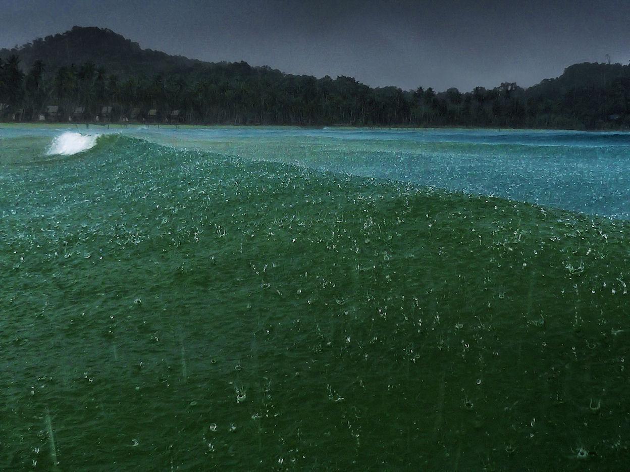 rain-water1