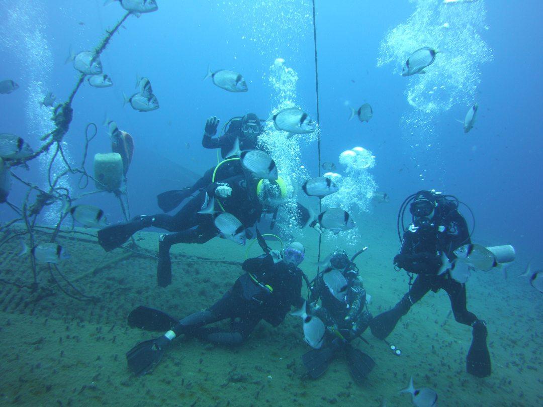 Diving on the Zenobia wreck in Larnaca