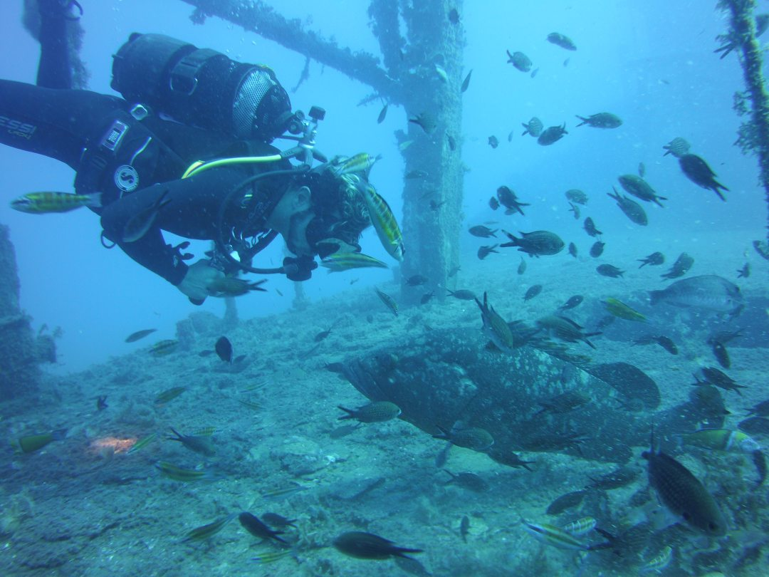 Diving in the Limassol wrecks