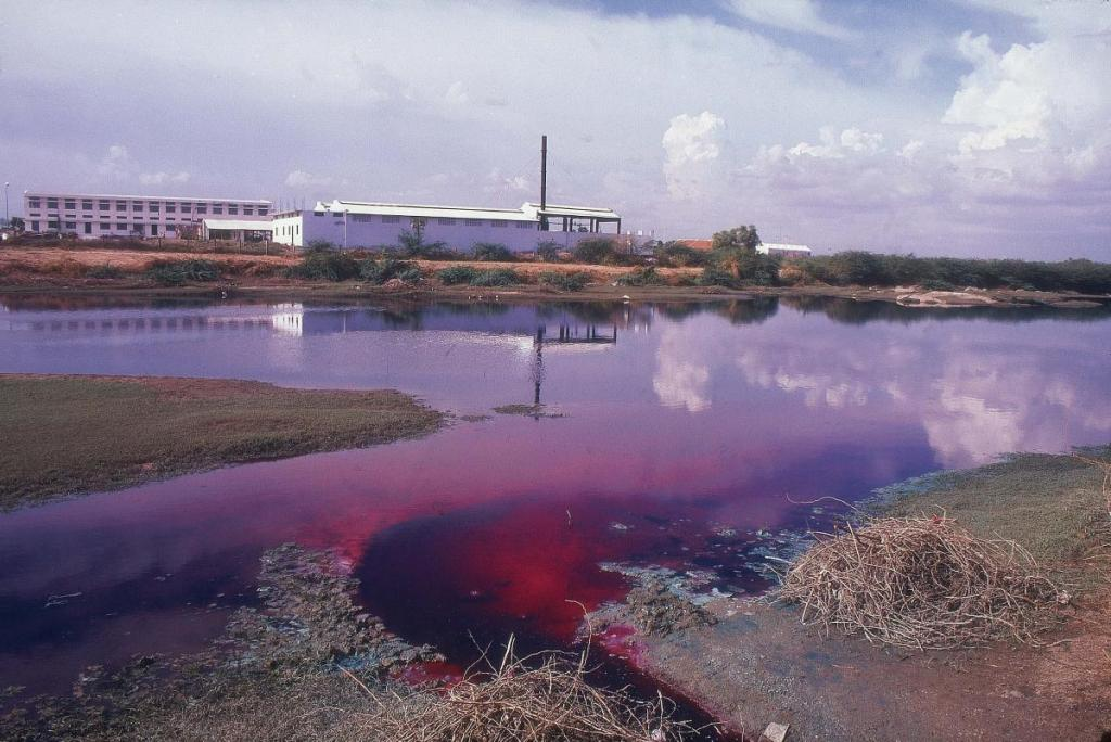The rivers around Tirupur are often red or purple with runoff from nearby factories such as those in the Netaji Apparel Park
