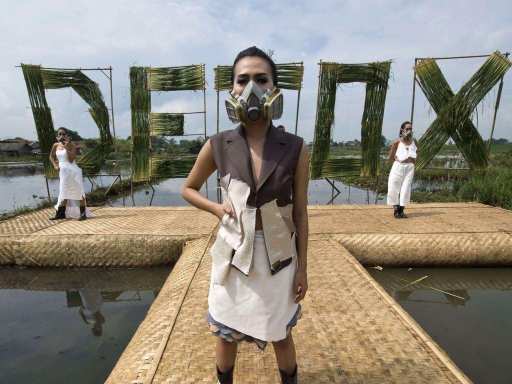 [Image: Greenpeace]