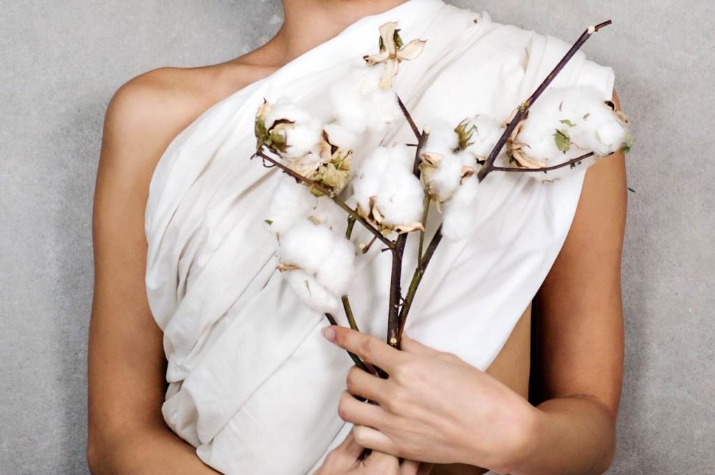 [Image: Bhumi Organic Cotton]