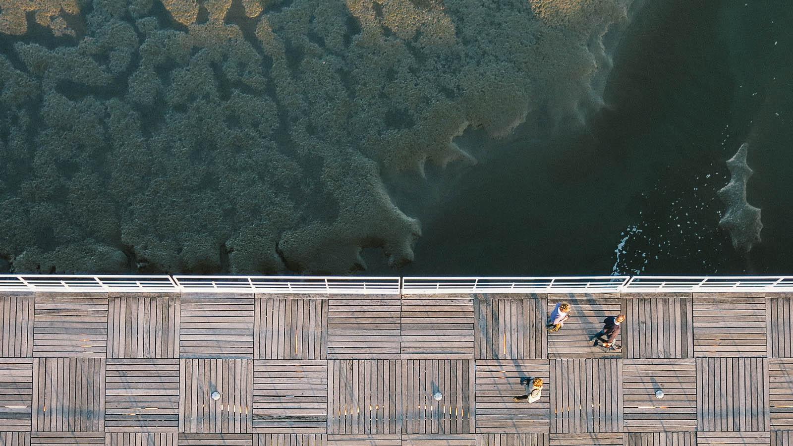 slider-dock