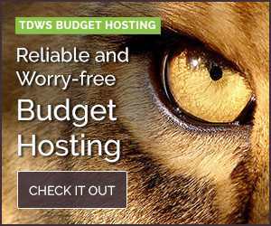 Budget Hosting (Annually)