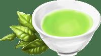 高い抗酸化作用をもつ緑茶のカテキン