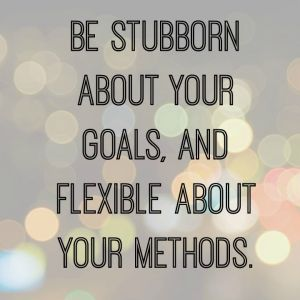 be stubborn about your goals and flexible about your methods