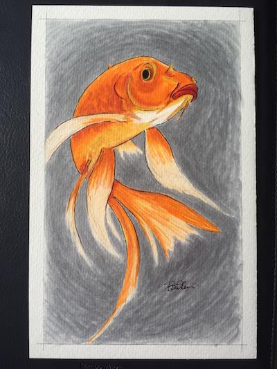 Grumpy Fish bsteis