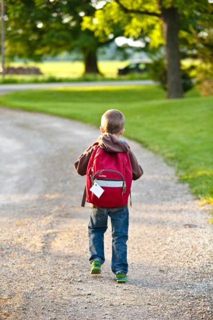 boy, backpack, school, kid, life secrets