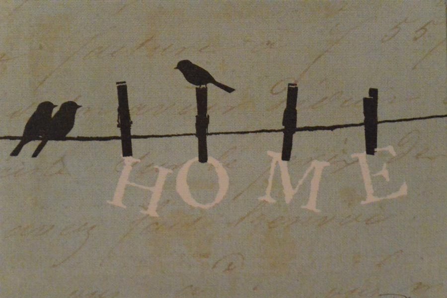 birds, washing line, clothes line, clothes pegs, home, home sweet home, house warming, no place like home