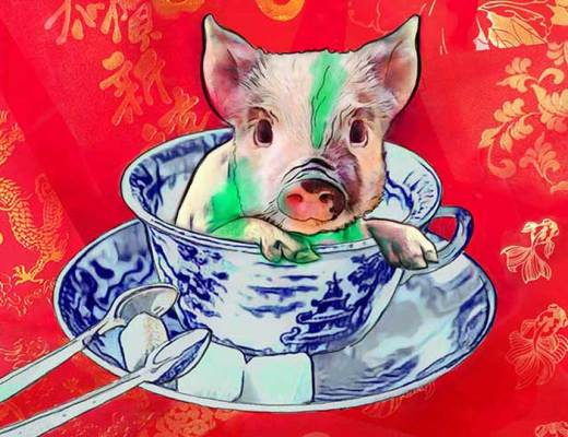 teacup pig, year of pig, lunar new year, Chinese new year, art, illustration