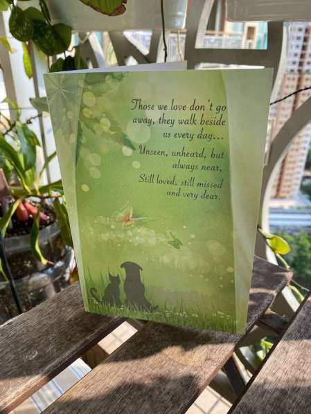 Managing the loss of a pet a card with a poem