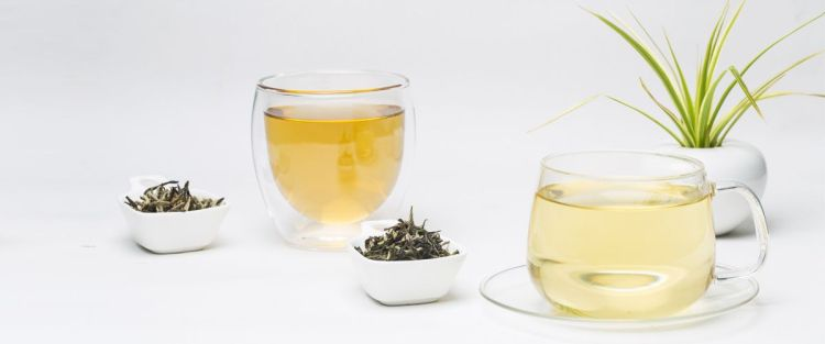 The Difference Between White and Green tea