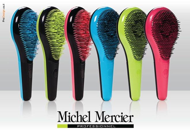 Michel Mercier 004