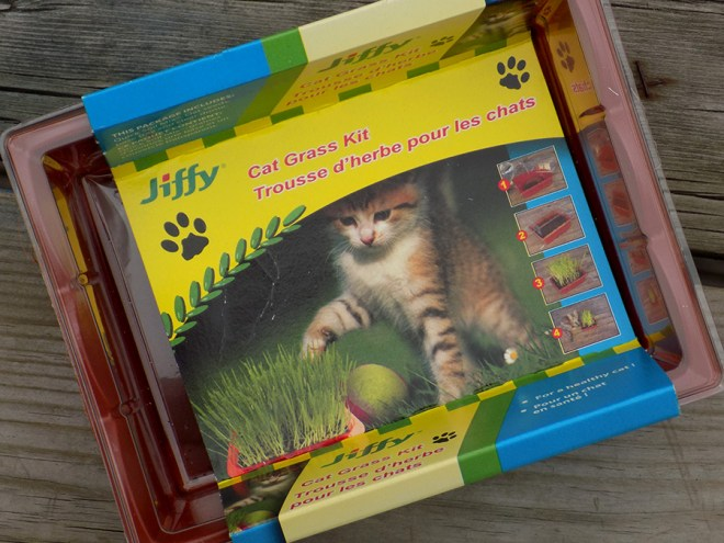Jiffy Cat Grass Review