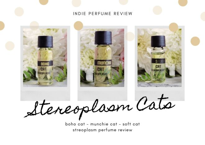 Stereoplasm Soft Cat Boho Cat Munchie Cat Reviews