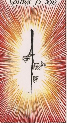 ace of wands reversed