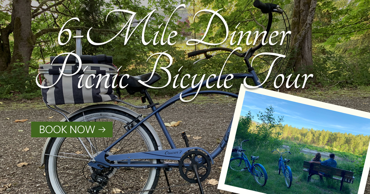6-Mile Dinner Picnic Bicycle Tour