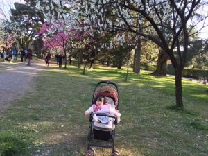 peach blossoms and a baby