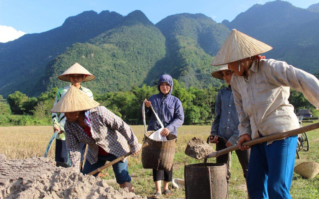 How I Miss Vietnam – From a previous Teacher's Friend Vietnam teacher