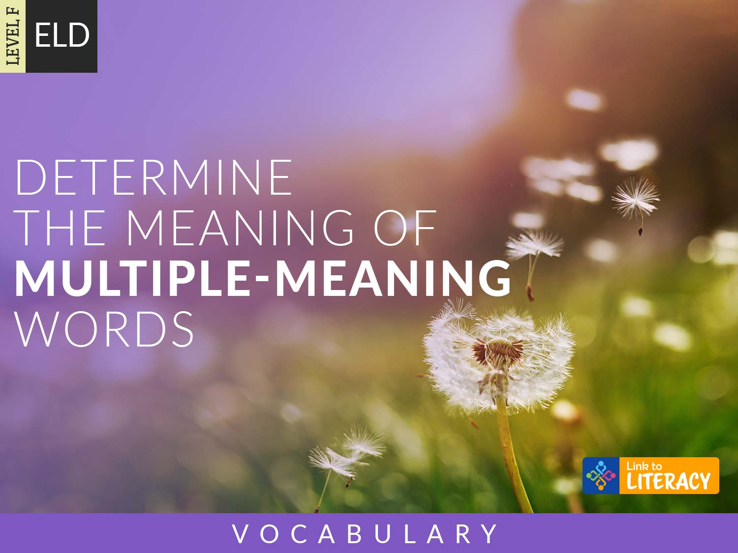 Determine The Meaning Of Multiple Meaning Words