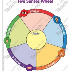 Five Senses Diagram Of A Sea Star Water Vascular System Wheel Activating The Writing Skills Lesson See Inside Image