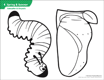 Caterpillar & Chrysalis (Patterns & Activities