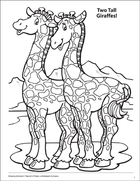 Two Tall Giraffes Amazing Animals Coloring Page