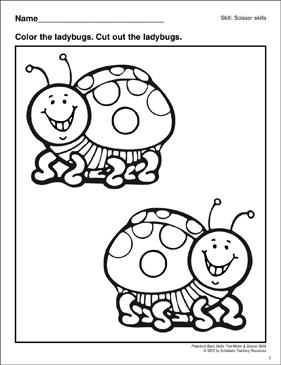 Cutting Out the Ladybugs: Preschool Basic Skills (Scissor