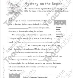 Mystery on the Beach: Quick Cloze Passage   Printable Skills Sheets [ 1552 x 1225 Pixel ]