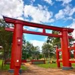 【ほぼリアルタイム紀行】パラグアイ・イグアス日本人移住地の一日