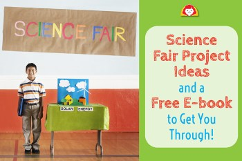Science Fair Project Ideas On Poster Board