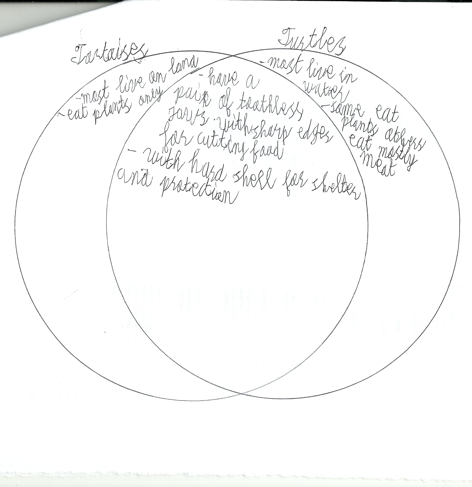 Renewable And Nonrenewable Venn Diagram